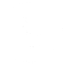 Blouming Logo Small